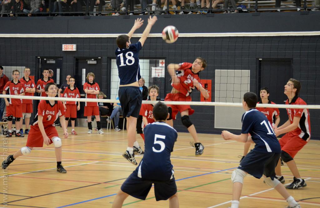 wat kun je leren van volleybal? Het gaat om presteren